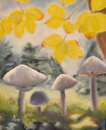 Koboldaugen im herbstlichen Wald von Claudia Janßen