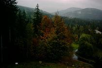 Herbstbild aus dem Böhmer Wald by Antje Emanuel