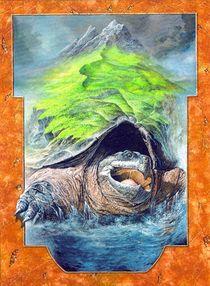 Schildkrötenwelt von Ernst Thupten Dawa Neuhold