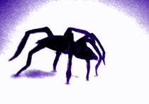 lilac spider by Silvia Martini