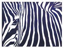 Zebra von Theodor Fischer