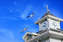 Seagulls at the Pier by Eye in Hand Gallery