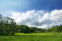 Wiesen - meadows by fotokunst