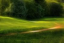 Green Dream by fotokunst