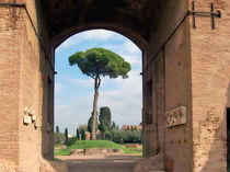 Antikes Rom von fotokunst