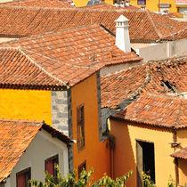 Häuserdächer von Verena Leissler