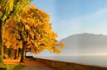 autumn on lake side, beautiful landscape. Switzerland von dreamyfaces