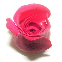 Rose nr.1 by svenja bary
