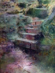 Treppe im Wald by claudiag