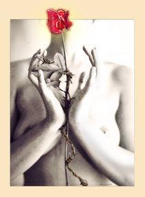 Bodyrose by artalacard