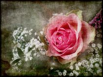 Grunge And Roses by Andrea Rausch