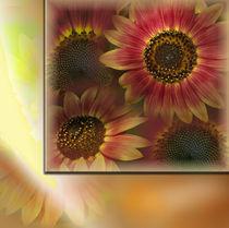 Sonnenblumen von Martina Rathgens