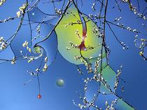springtime.... by zyklop