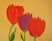 Tulpen von ksteffen