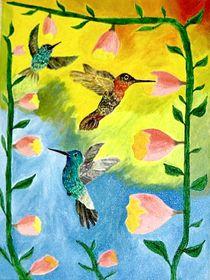 Kolibries von ksteffen