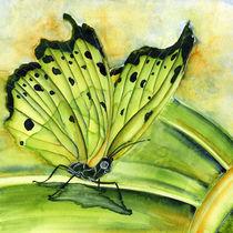 Butterfly I by Nina Vahrenkampf