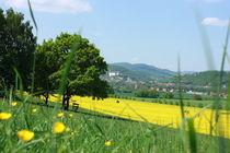 Sommertag in Thüringen von Isabell Krauße