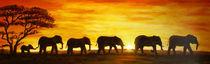 Elefanten von Cathleen Ahrens