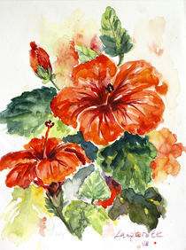 Roter Hibiskus by Cathleen Ahrens