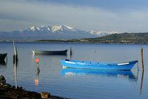 Blaues Boot von Cathleen Ahrens