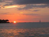 Sunset bei Key-West von Alwin Mücher