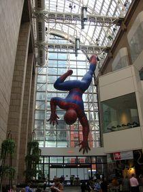 Big Spiderman von Alwin Mücher