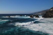 Playa La Zamora von Alwin Mücher