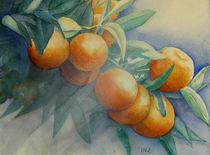 Orangenzweig by Ingrid Nagl-Zeiler