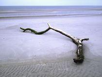 Strandgut von Michael Beilicke