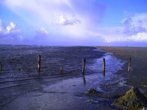 Strand von Michael Beilicke