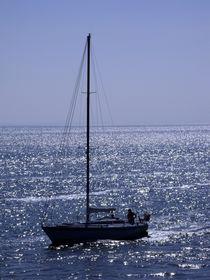 Sailor von Michael Beilicke