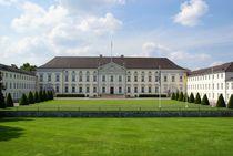 Schloss Bellevue in Berlin von Juana Kreßner