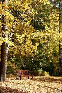 die Herbstsonne genießen von Juana Kreßner