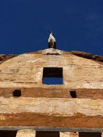 Stork's ruins IV by kiellapa