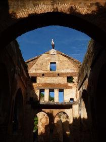 Stork's ruins III by kiellapa