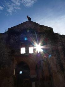 Stork's ruins I by kiellapa