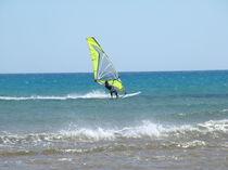 Surfer von Franciska Distler