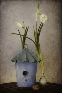 My home is my castle by piri