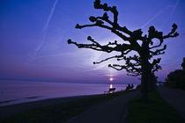 Blue sundown von Gordon Below