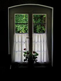 Bauernfenster von Michael Guntenhöner