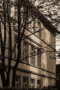 Fenster von Michael Guntenhöner