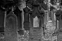 Jüdischer Friedhof Stuttgart 1 von Michael Guntenhöner