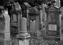 Jüdischer Friedhof Stuttgart 3 von Michael Guntenhöner