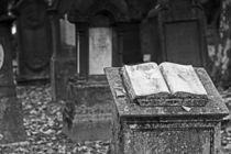 Jüdischer Friedhof Stuttgart 4 von Michael Guntenhöner