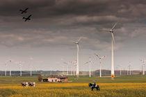 Energiewirtschaft von Michael Guntenhöner
