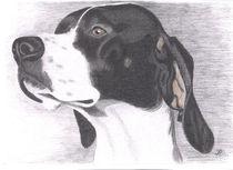 Pointer Vorstehhund Portrait Zeichnung Bleistift von irmelore