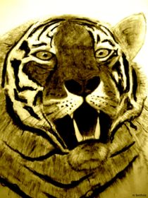 Dangerous Tiger von M. Fernholz