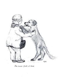 Amis by Heidrun Gonschorek