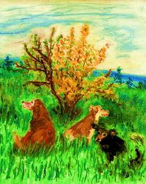 Rast by Heidrun Gonschorek