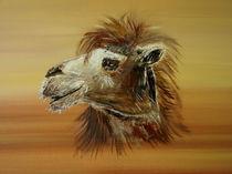 Kamel von Conny Krakowski